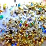 verbod op microbeads