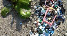 BOGE-plastic-footprint-eXtraSM