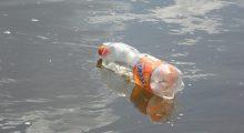 frisdrankbedrijven soft drink companies